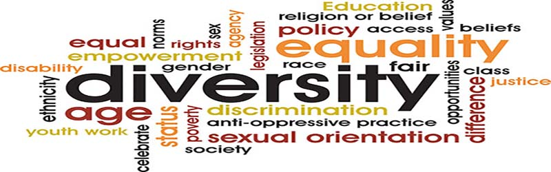 Diversity rights and equality essay